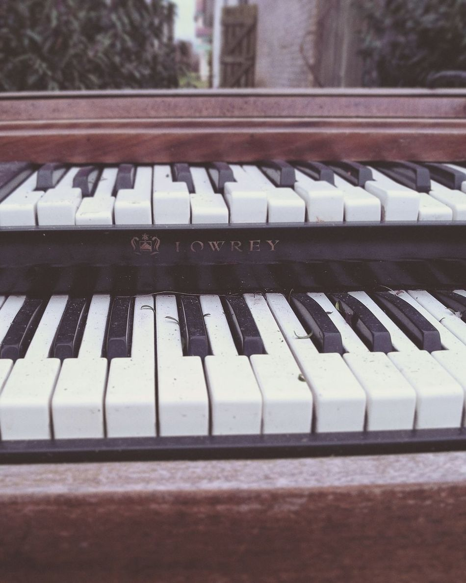 A Retro 1960's Lowrey electric organ found in a skip. Decay Musical Instruments Dumpsterdiving Rotting Away Unwanted