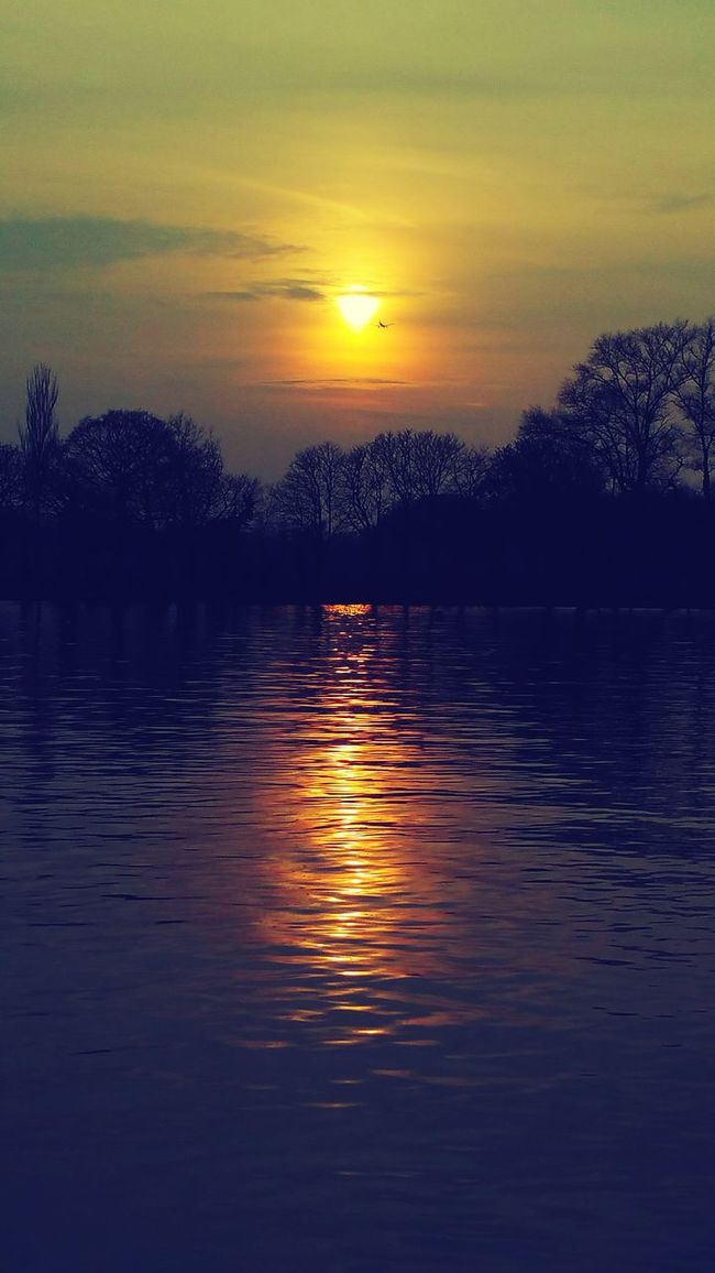 Capturing the sunset... Things I Like Perfect Sunset Sunset Silhouette Sunset Reflection On Water Sunset Reflection Environmentalist Q Quaint Perspective River Thames Riverside Sunset Nature Harmony Showcase March