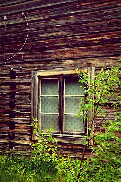 Secret Garden Window to eternity maybe?! 😊