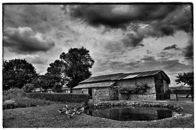 Rural Presse Journalism Photographer Black And White Rural Rural Scenes Photography Art Art Gallery Artistic Photo