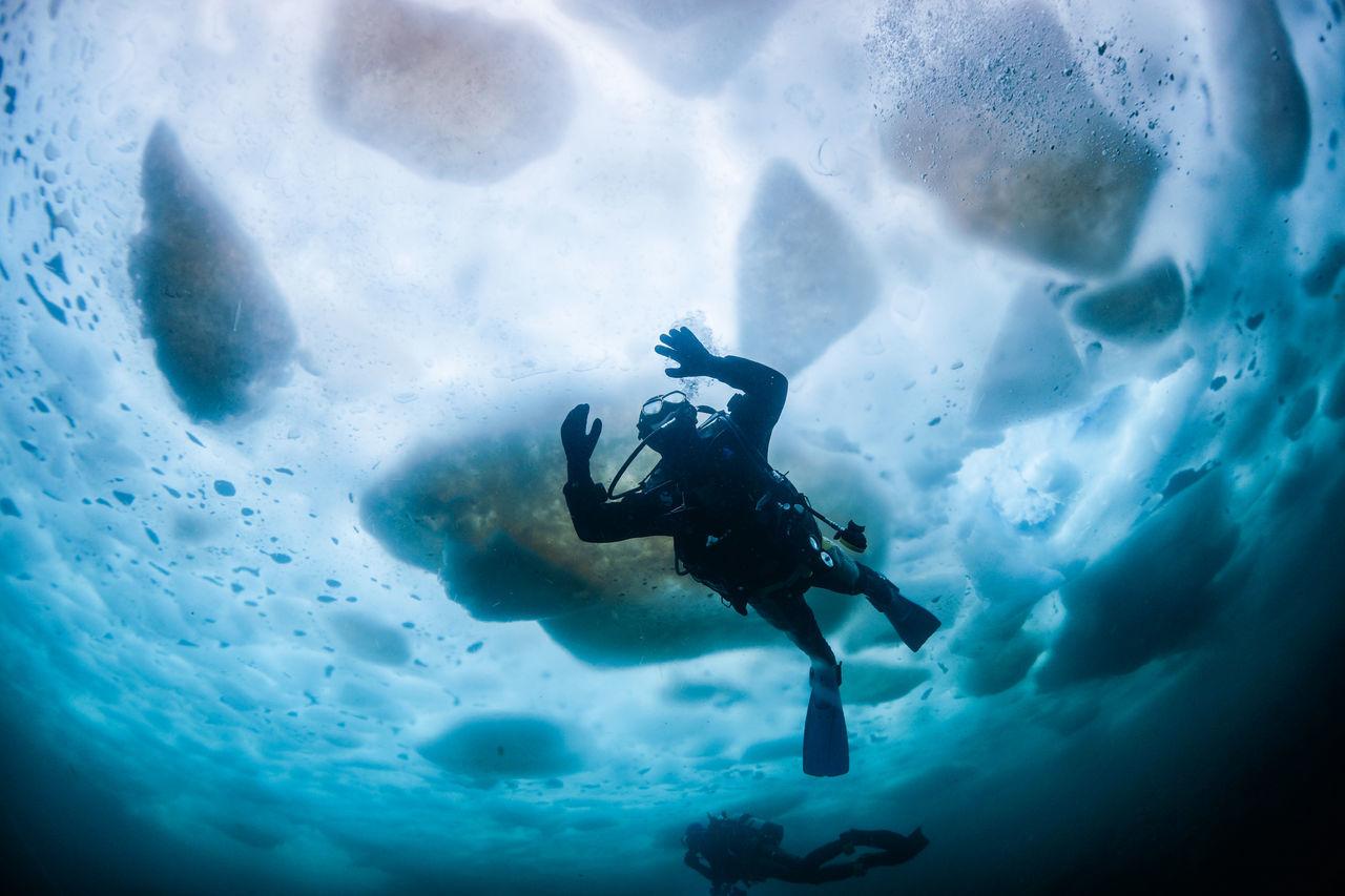 Beautiful stock photos of underwater, Adventure, Beauty In Nature, Cold Temperature, Curiosity