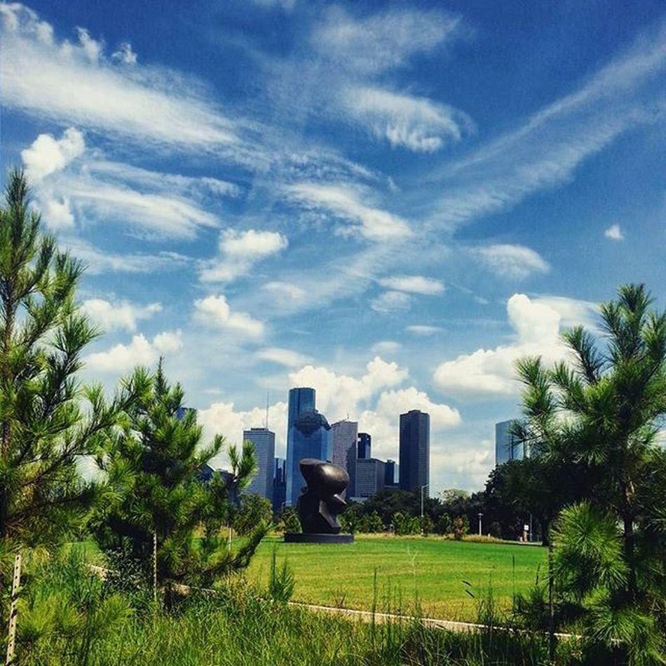 Houston Texas Skyline Architecture Nature Subtropical BuffaloBayouTrail SundayFunday Trees Clouds Fall2015 Bayoucity Bayou
