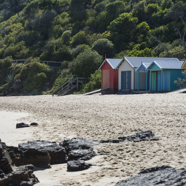 Architecture Australian Landscape Beach Beach Huts Beach Nature Beauty In Nature Building Exterior Built Structure Colorful Day Green Color Nature No People Outdoors Sand Sky Tree Victoria