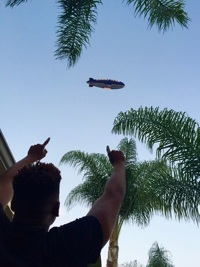 Blimp over Hollywood. Blimp Palm Trees Taking Photos Celebration Pointing Blue Blue Sky Flying Floating