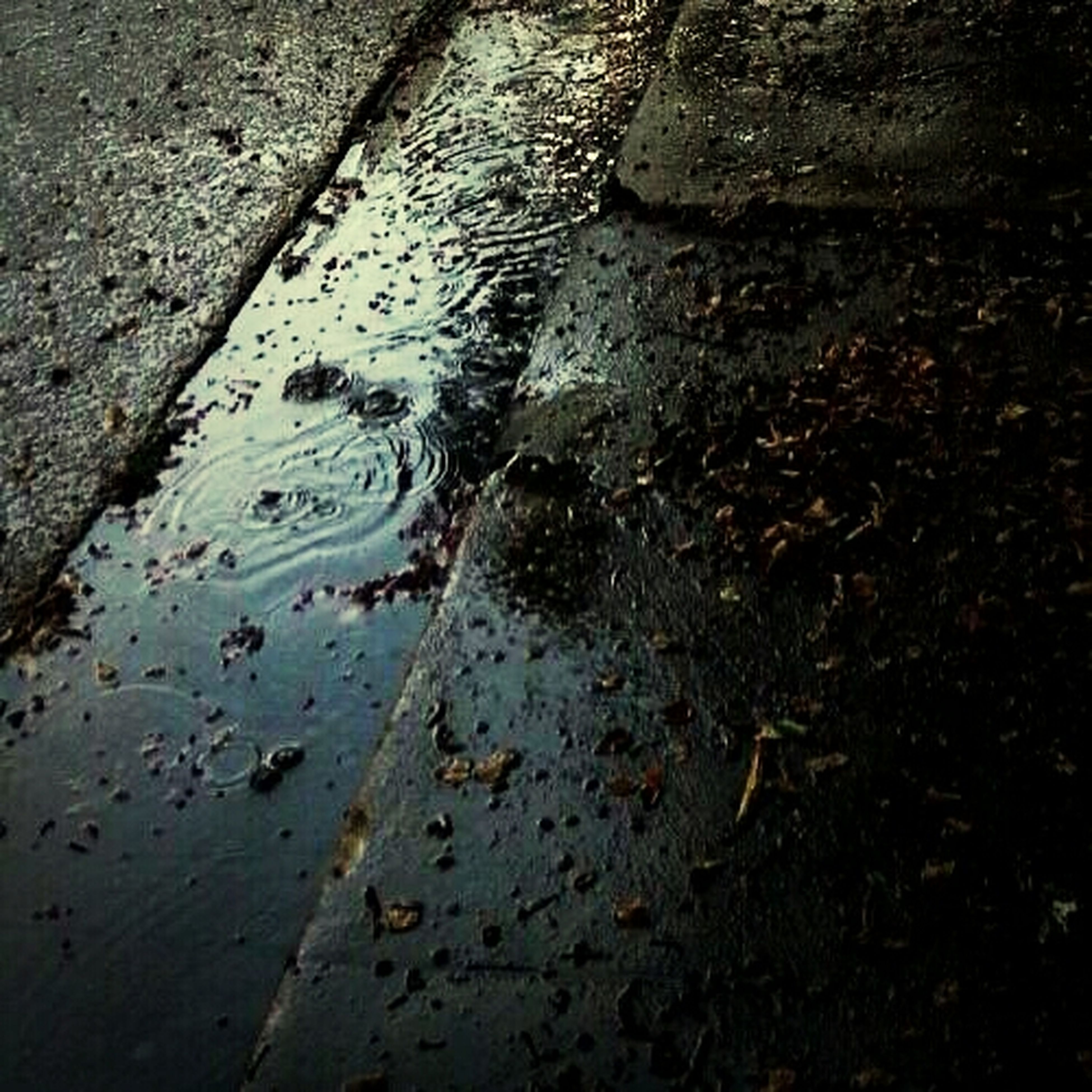 water, high angle view, wet, puddle, reflection, street, leaf, asphalt, season, rain, outdoors, day, no people, dry, nature, falling, transportation, road, fallen, autumn