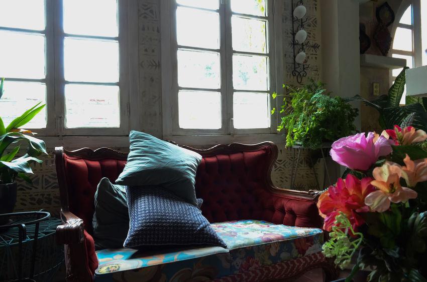 Architecture Coffee Shop Scene Cojines Diseño De Interiores Flower Pillows Vintage Windows
