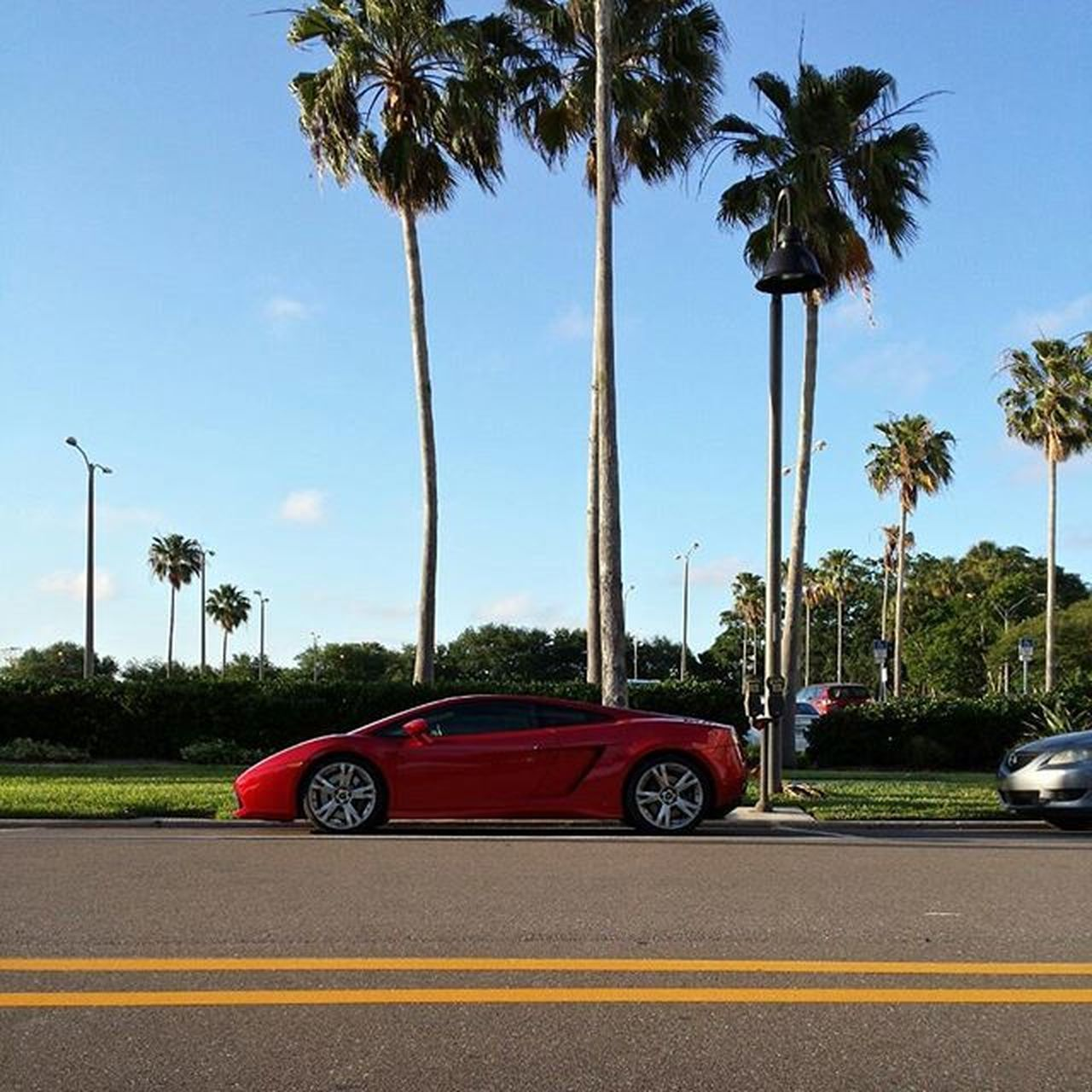 Don't really care for em', but its cool. ------------------------------------EyeRiseUpx Lamborghini Gallardo Red Sun Clearwater Steeze HASHTAG Italian Exotic Photography sKills LookingGood Beautiful Blah