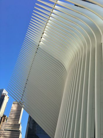 Curved  Curved Buildings Architecture Built Structure Low Angle View Building Exterior City Skyscraper Modern Curves Ribs Tall - High White Tower Building Story City Life Repetition Architectural Feature Blue Office Building Day Diminishing Perspective Oculus NY Sky Outdoors