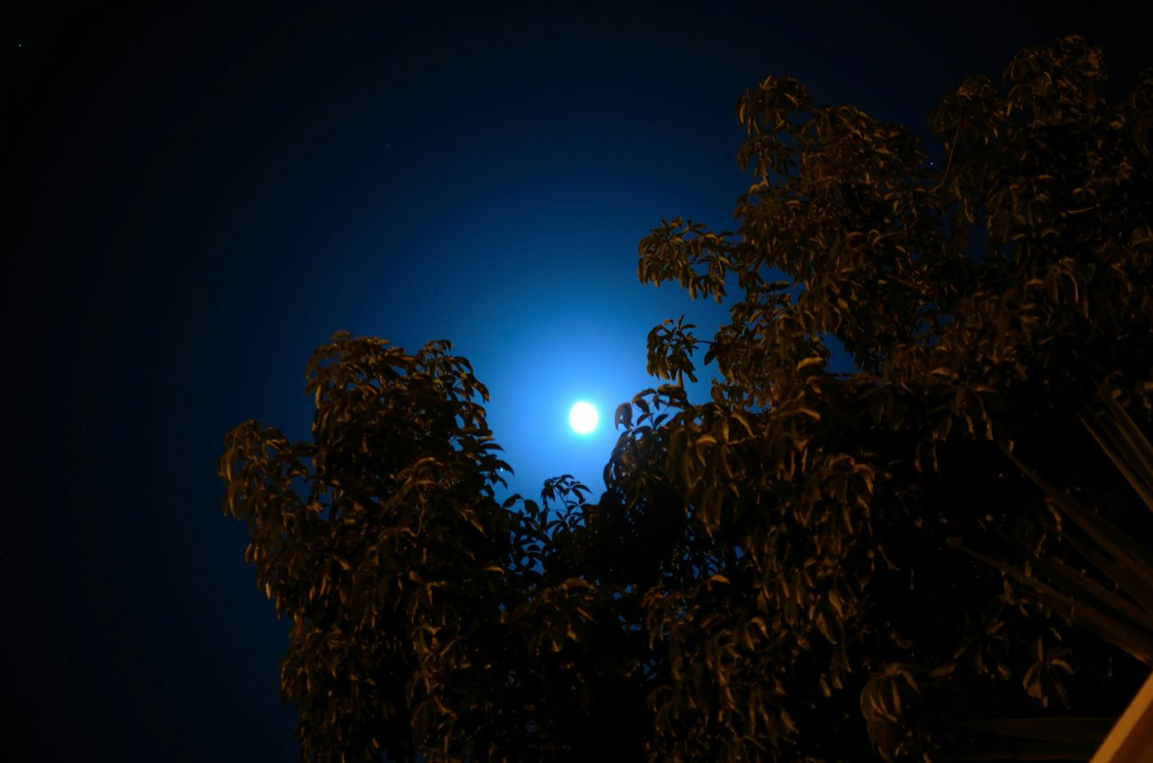 Sky Beauty Nature Oujda City, Morocco Night Photography A Look At The Sky سبحانك ربي Moon Brautifull Sky Clear Sky