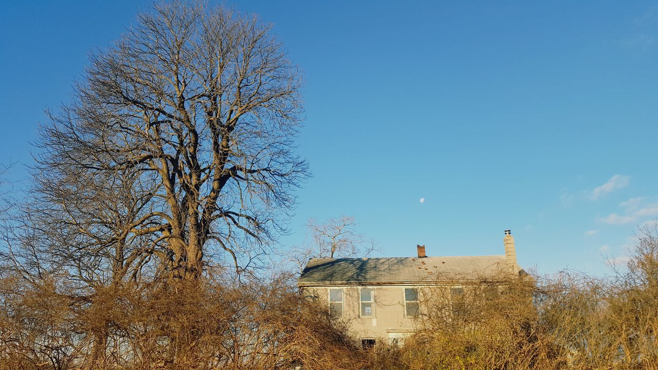Farm house is disappearing back into the farm Tree Outdoors No People Morning Vacant House Farmhouse House Overgrowth And Unmaintained Empty House Windows Moon And Clouds