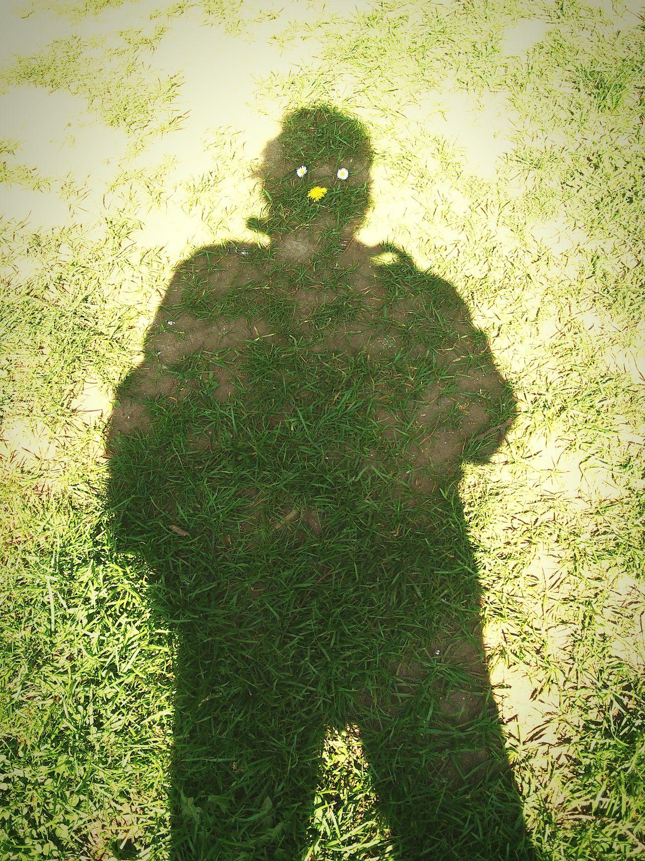 Shadow-art Self Shadow Ground Grassfield Sunnyday☀️