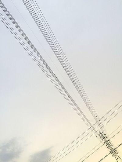 空 Sky 電線 Electric Wires