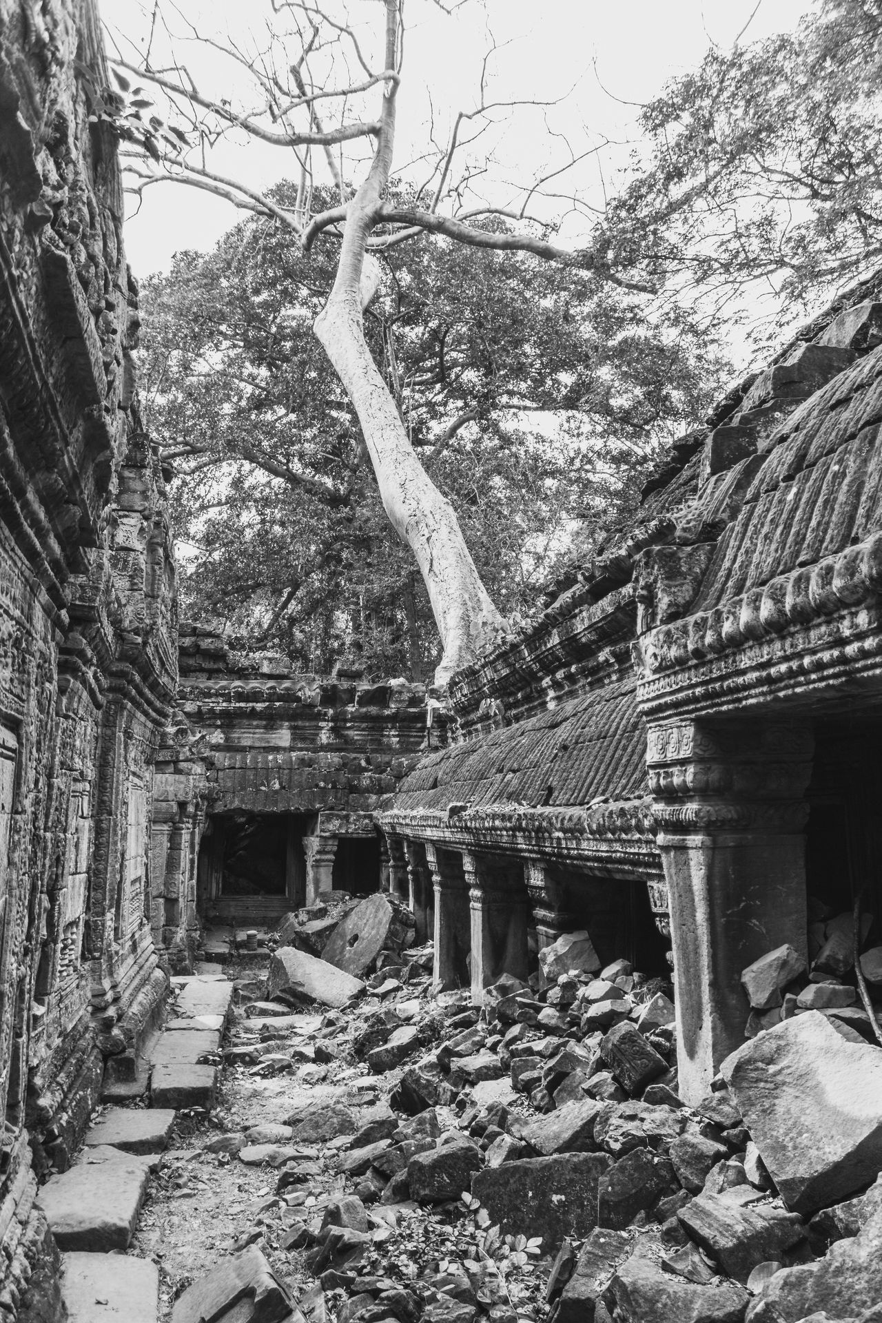 Angkor Architecture Blackandwhite Building Exterior Built Structure Cambodia Day History No People Outdoors Ruin Sky Stones Temple Tree Tree