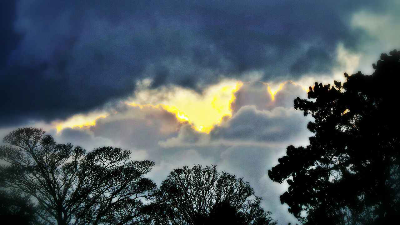Heart Heart Shaped Cloud Cloud_collection  Clouds And Sky Stormy Sky Golden Lining Trees Silhouettes Silhouette_collection