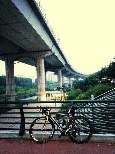 오랜만에 밤마실~ 신토불이 가보자! Road Bike Garmin -810 Zipp Movement