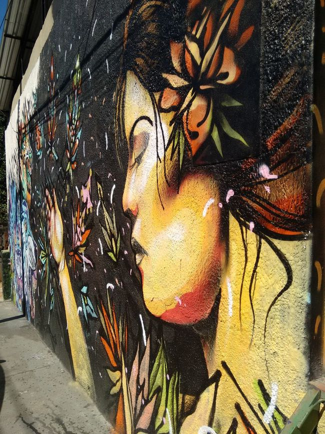 Creativity Culture Colorful Worldwide World Traveller Day Wall Painting/grafitti Grafitti Street Art Graffiti & Streetart Rio De Janeiro, Brazil Wall Murals