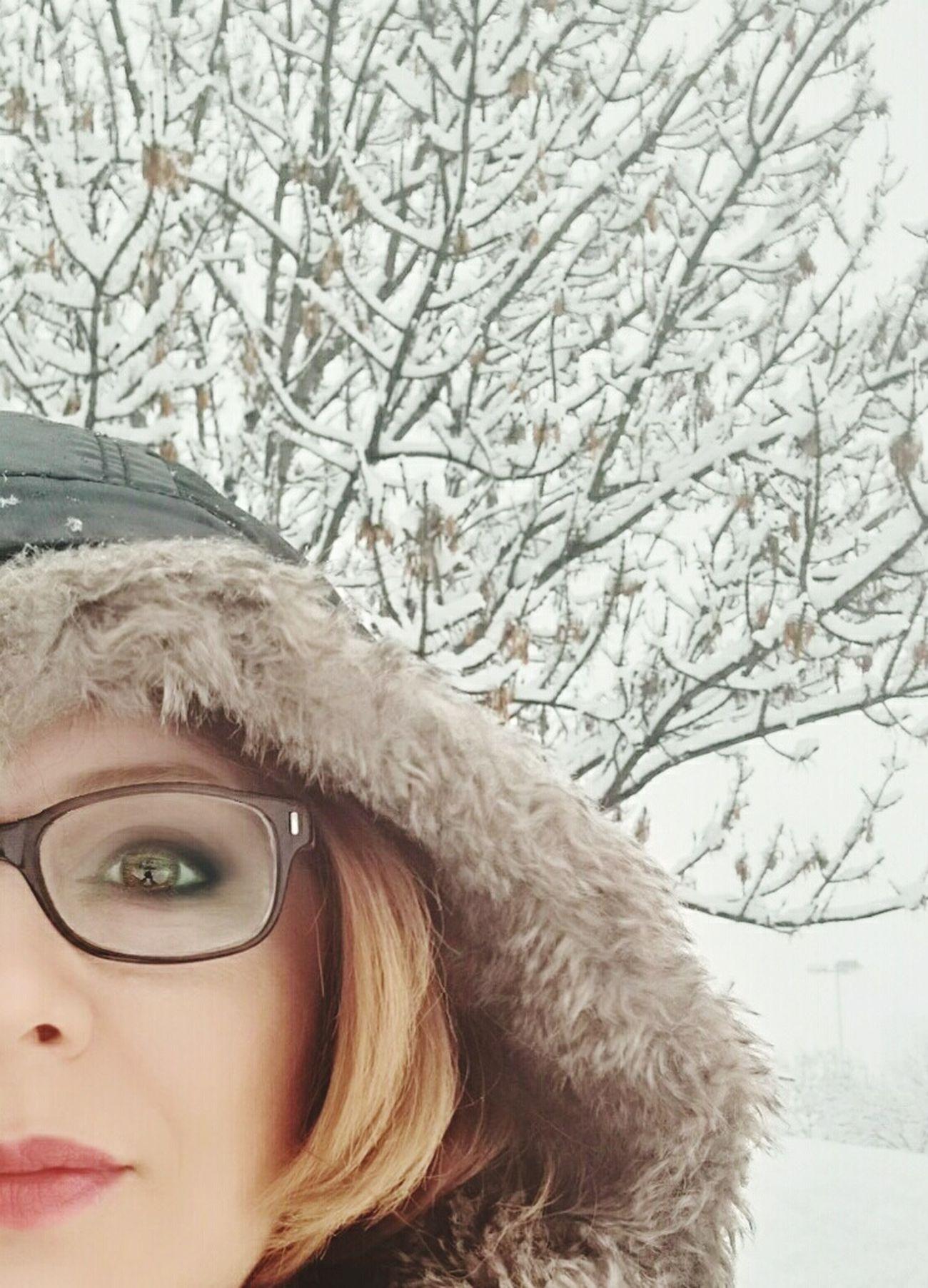 Snow ❄ Snowy Trees
