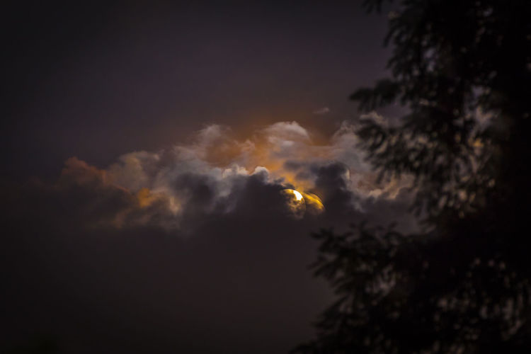 Moon reflecting on clouds Beauty In Nature Cloud - Sky Eary Low Angle View Moon Nature Night No People Outdoors Reflection Reflection On Clouds Scenics Sky Tranquility Tree