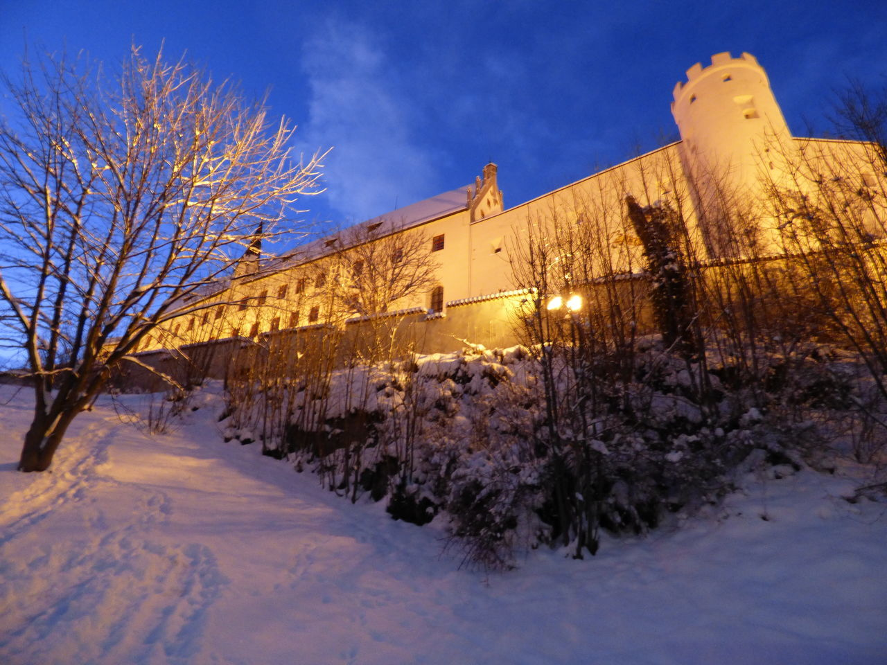 Architecture Cold Temperature Füssen Germany Hohen Schloss Learn & Shoot: After Dark Majestic Snow Tree Winter