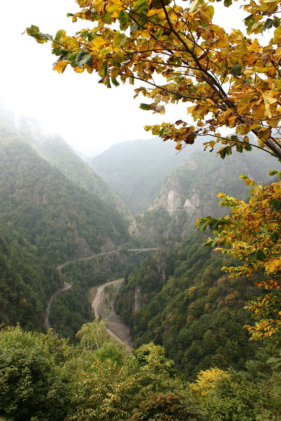 Beginning of autumn in Romania . Roads Mountain View Mountains EyeEm Best Shots - Nature Transfagarasan Pass Transfagaraşan EyeEm Nature Lover Autumn Edge Of The World