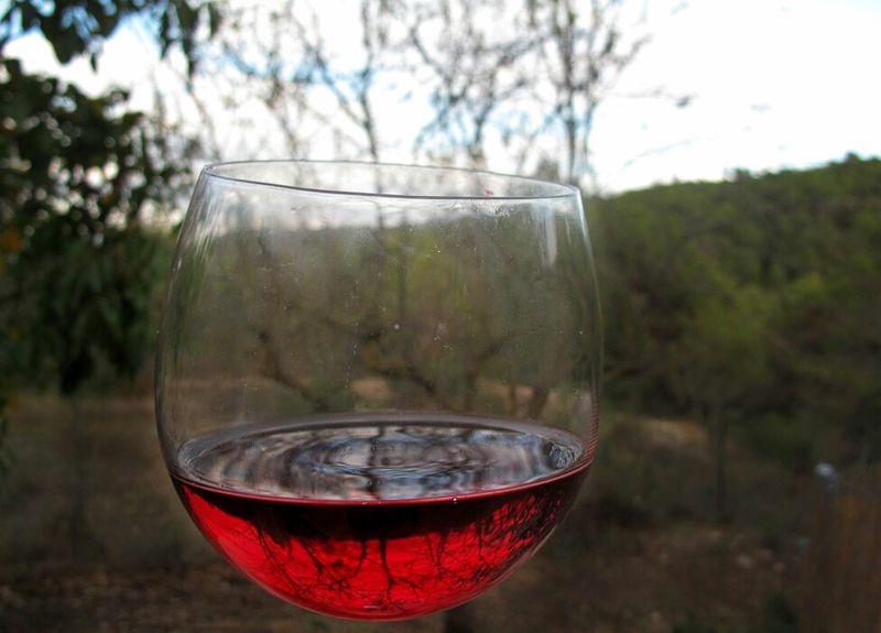 Wine Wine Tasting Eye4photography