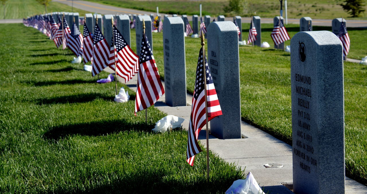 flag, patriotism, cemetery, military, tombstone, army soldier, honor, memorial, pride, heroes, grass, war, armed forces, army, military uniform, grief, outdoors, grave, uniform, day, stars and stripes, people