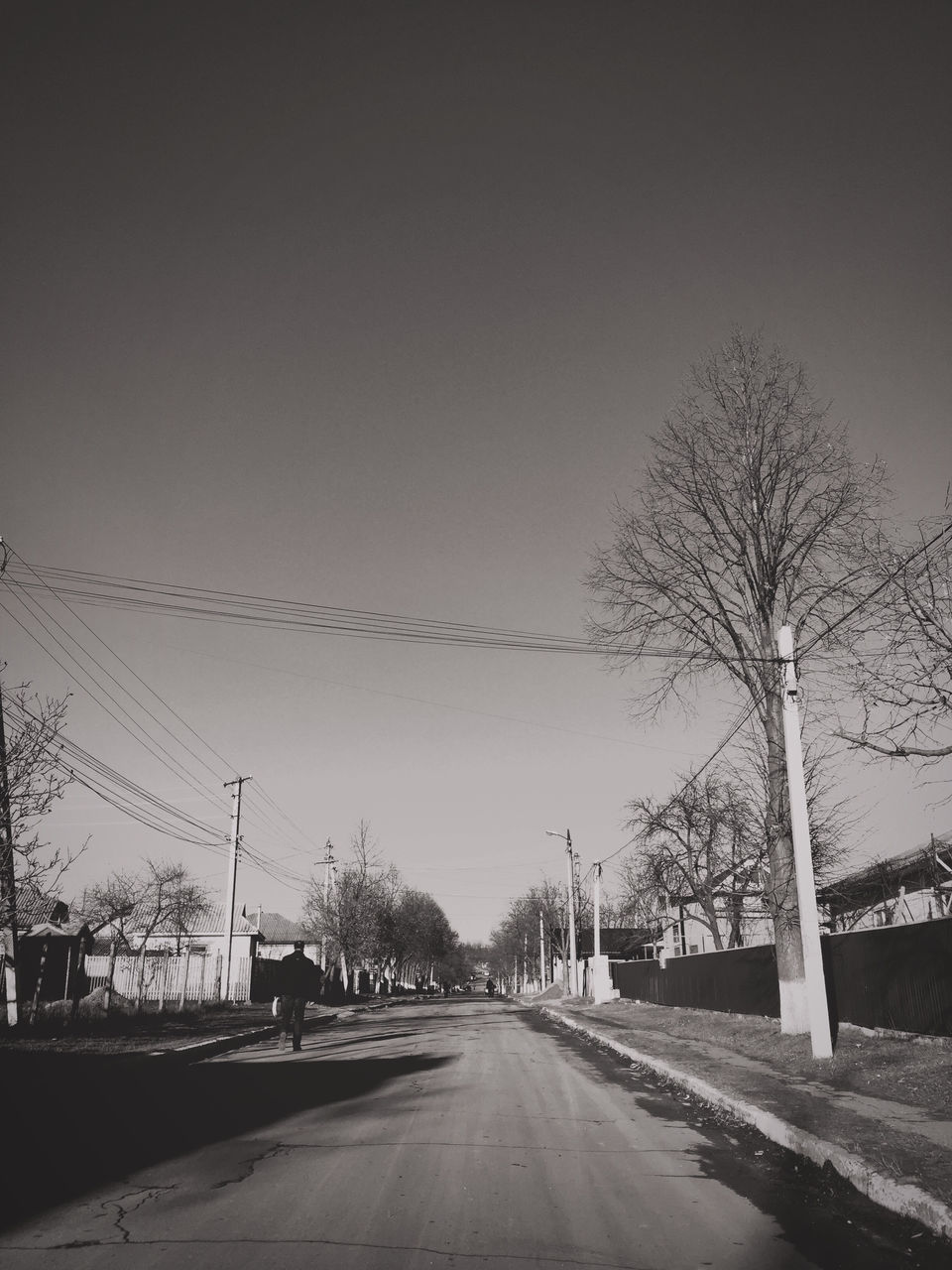 road, tree, bare tree, the way forward, transportation, outdoors, sky, day, clear sky, snow, winter, electricity pylon, nature, no people