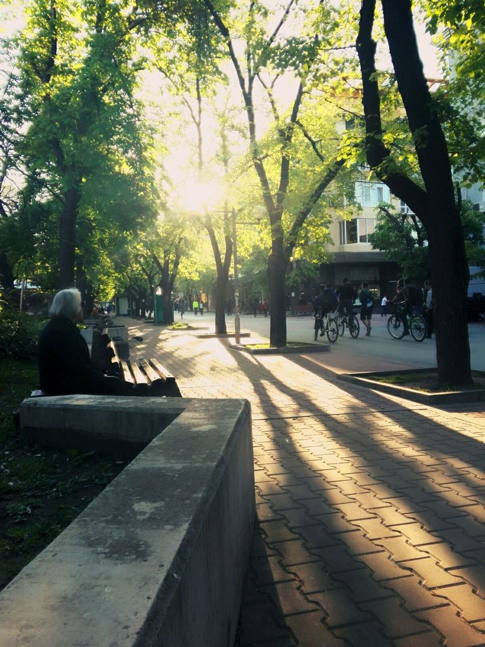 City Sunlight Relaxing View