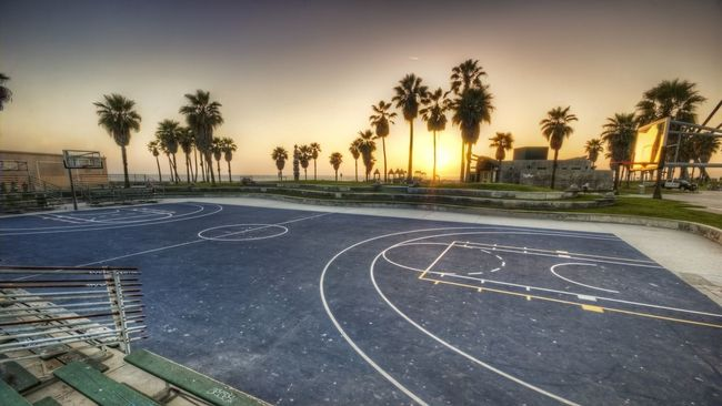 Basketball Beautiful City Day Los Angeles, California Outdoors Palm Tree Photo PixlrExpress Sky Sunset Tree