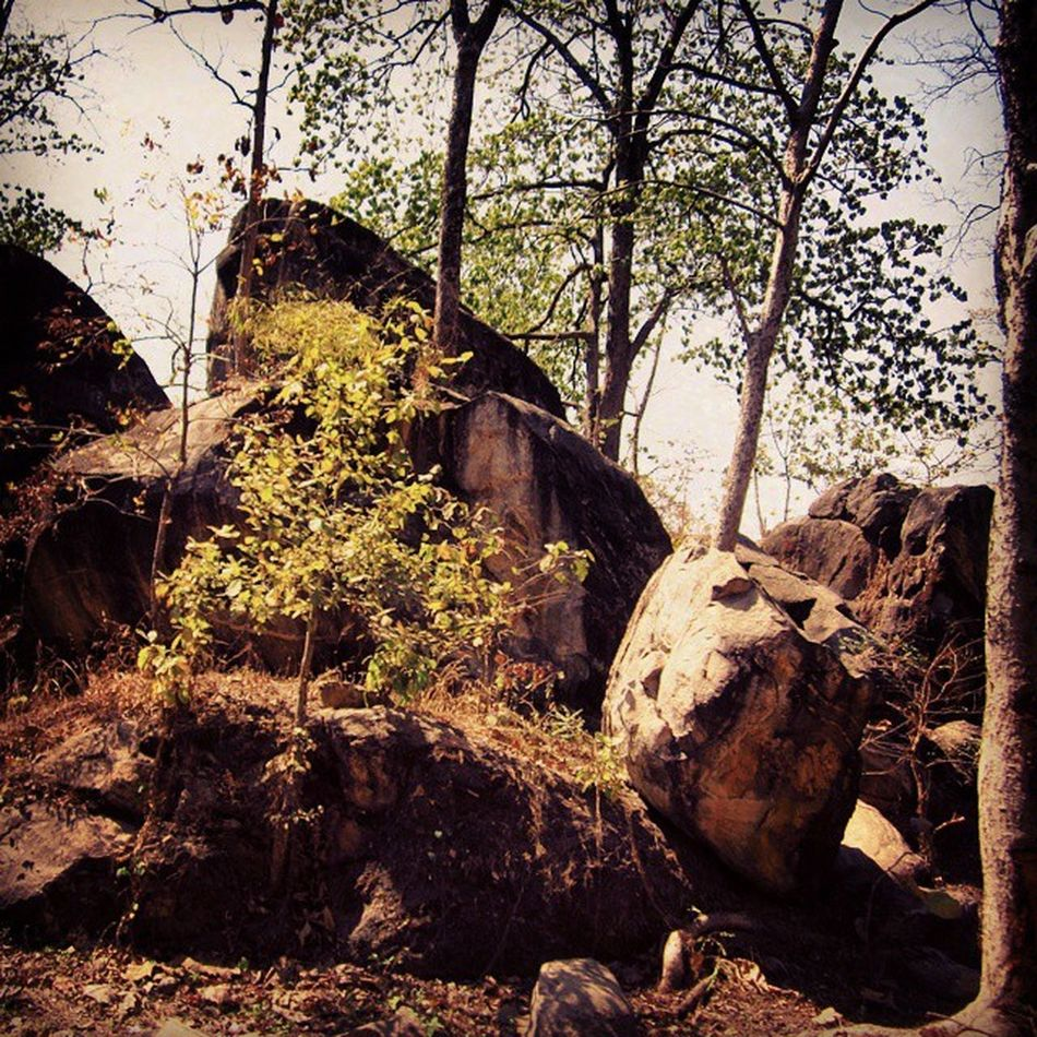 Rocks are more cooperative than people . Antiquated Archaic Shapeless Huge Large Rocks Stone Trees Peace Ghats  Plateau Wildlife Nagpur Road Madhyapradesh Wanderlust Journey