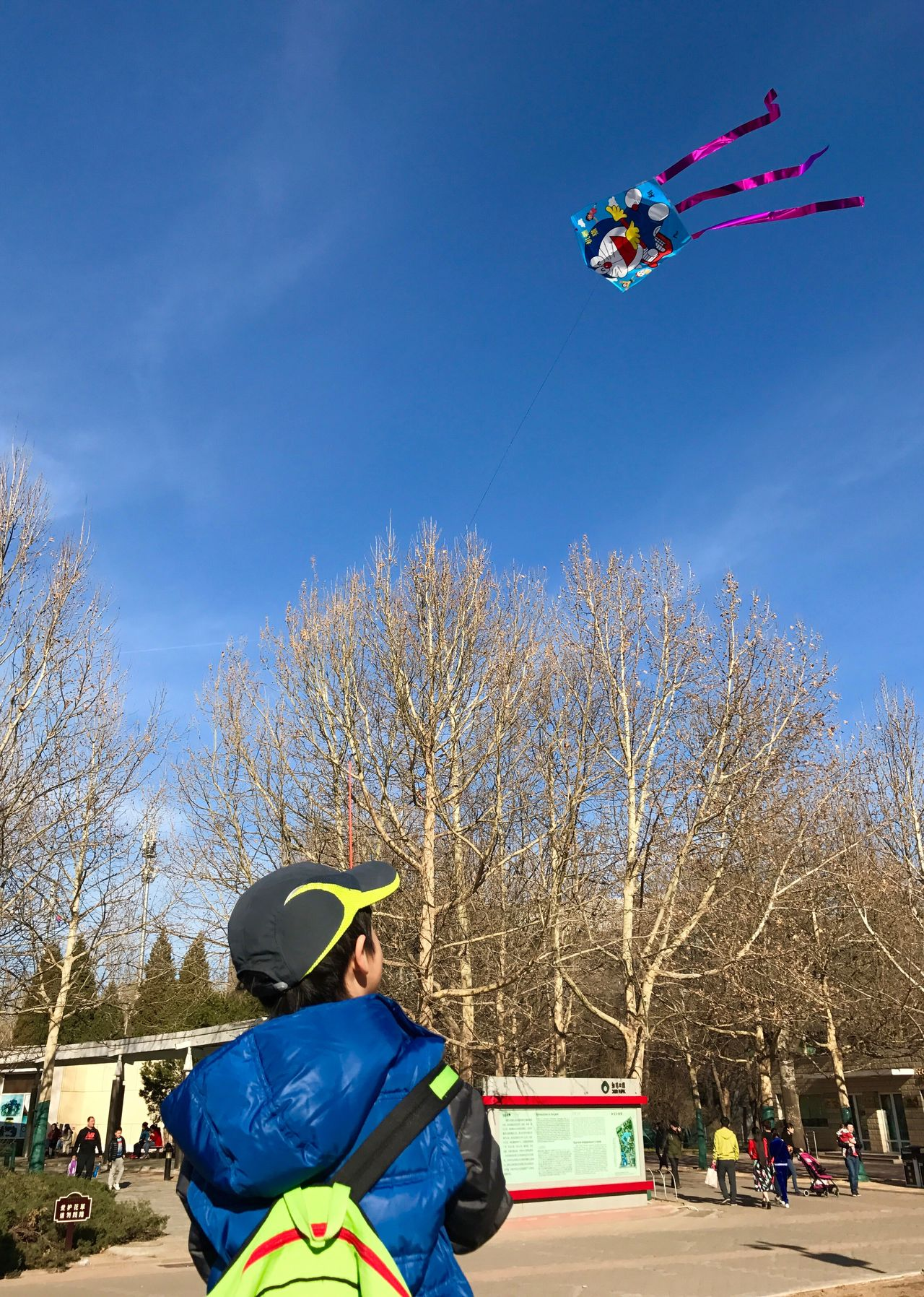 Flying High Free Time In The Park Blue Sky Flying Kites Leisure Activity Outdoors Sunny Day