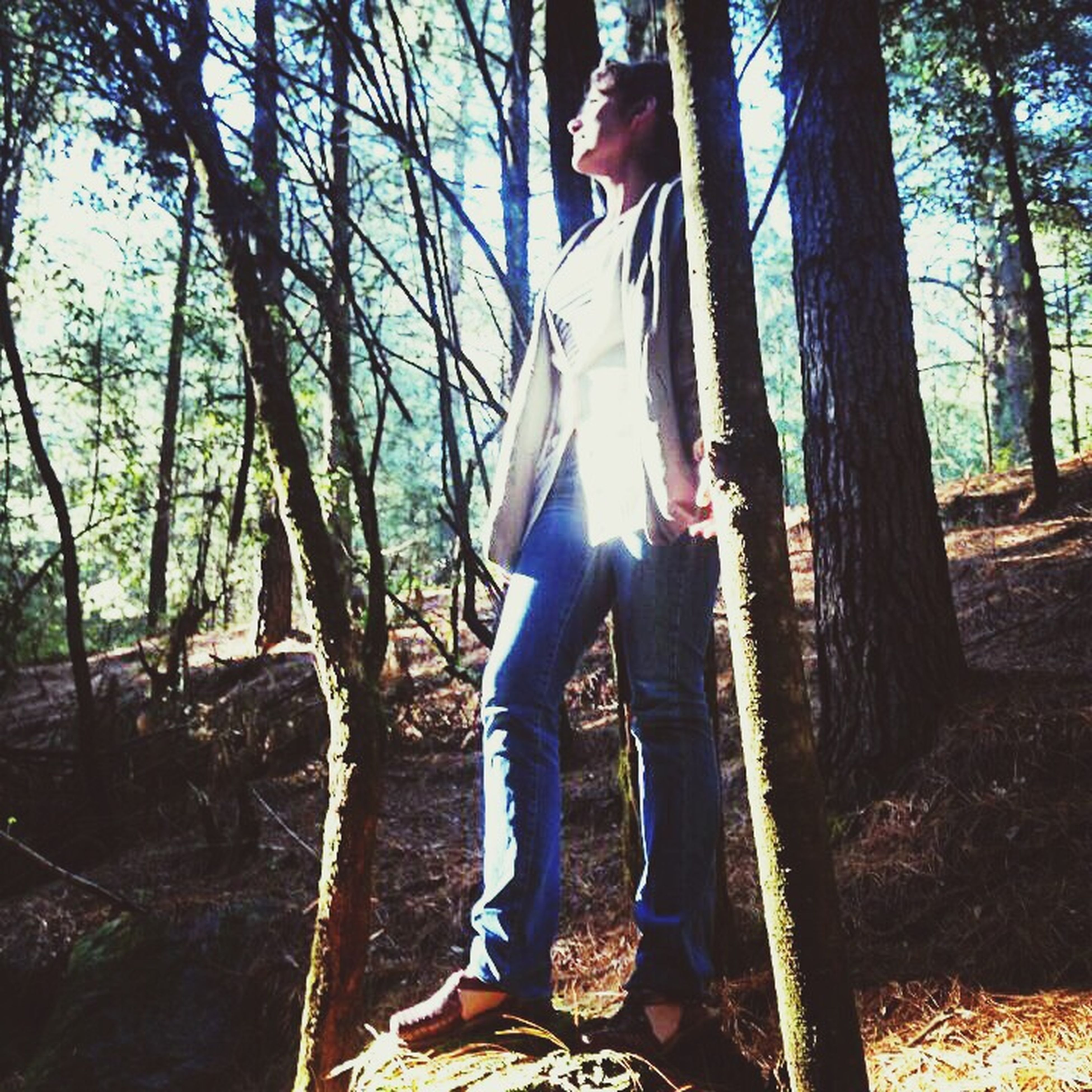 tree, sun, tree trunk, sunlight, sunbeam, leisure activity, lifestyles, lens flare, tranquility, nature, forest, sky, tranquil scene, landscape, standing, beauty in nature, low section, non-urban scene