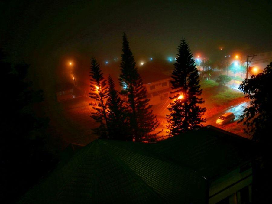 StrangerThings Stranger Things Stranger Things Fog Foggy Night Night Lights Photography Phoneography Kopics EyeAmNewHere Tagaytay Trees Outdoors