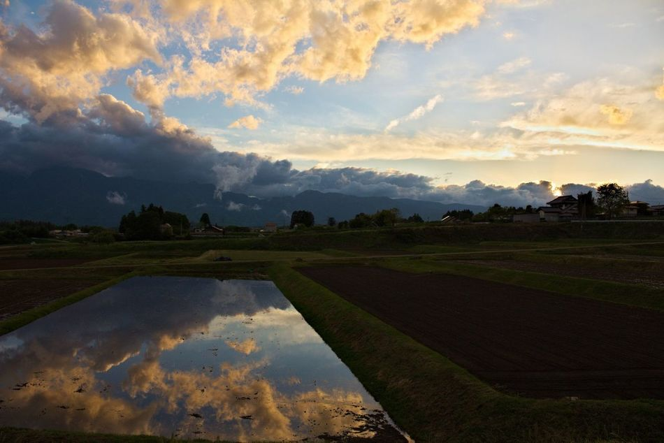 Afterrain Mirror Nature Rain Reflection Rice Field Rice Paddy Water Water Reflections 反射 水 水面 田んぼ 自然 雨上がり 雨上がりの空