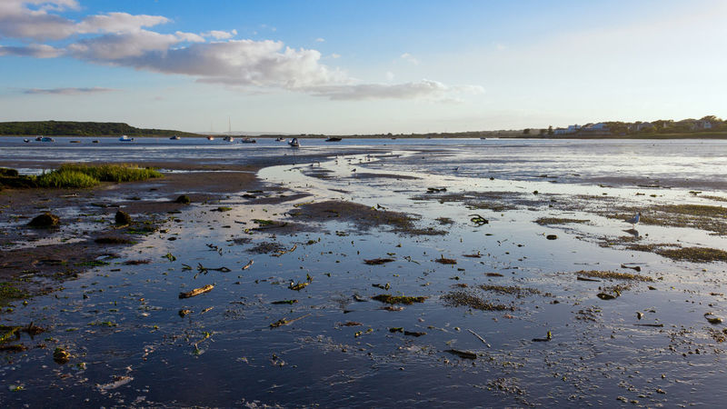 Low TIde Harbour View Christchurch Harbour Beach Beauty In Nature Cloud - Sky Day Hengistbury Head Horizon Over Water Low Tide Mudeford Nature No People Outdoors Sand Scenics Sea Shore Sky Tranquil Scene Tranquility Water