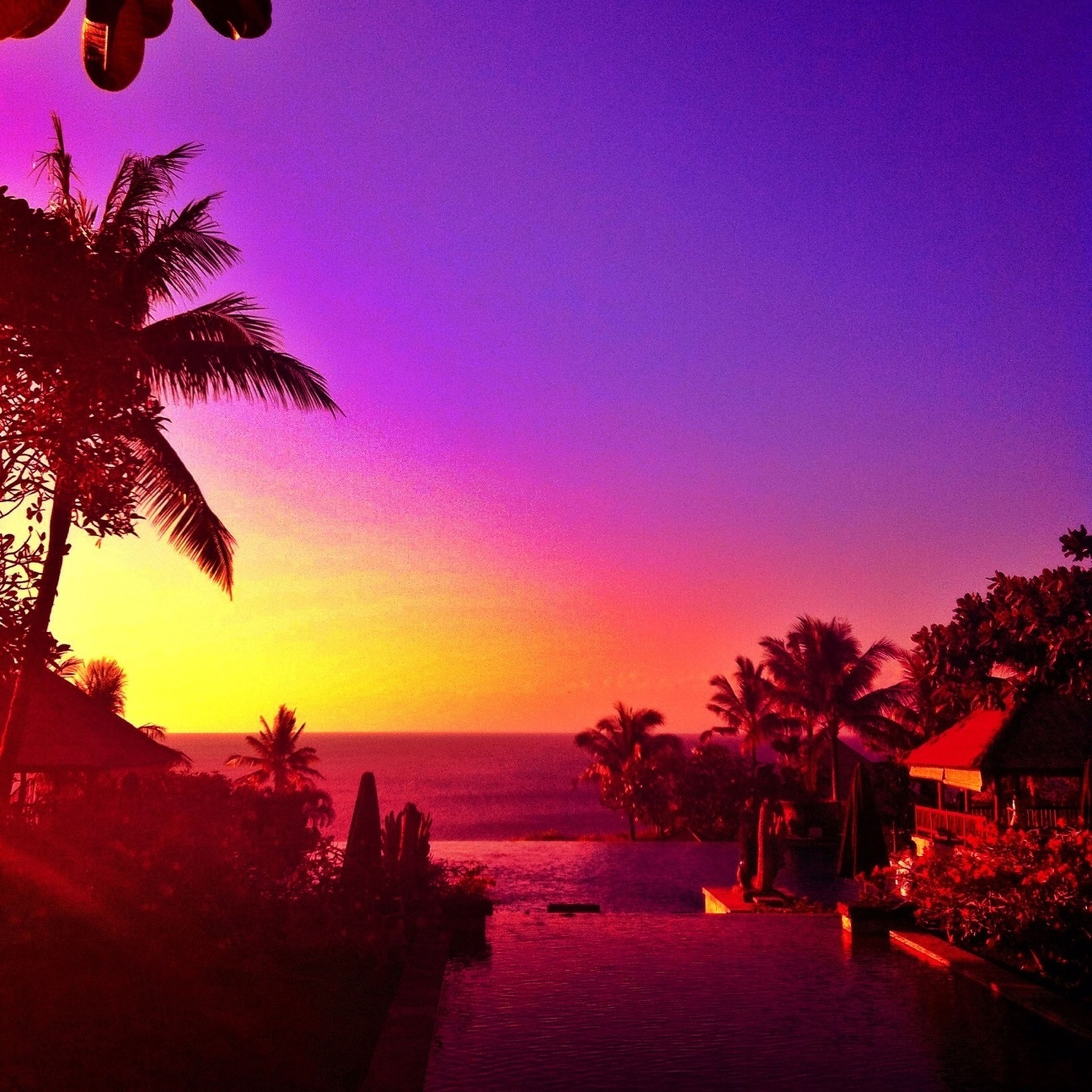 sunset, palm tree, horizon over water, sea, beauty in nature, tree, scenics, tranquil scene, tranquility, nature, copy space, silhouette, orange color, idyllic, sky, water, clear sky, beach, growth, built structure