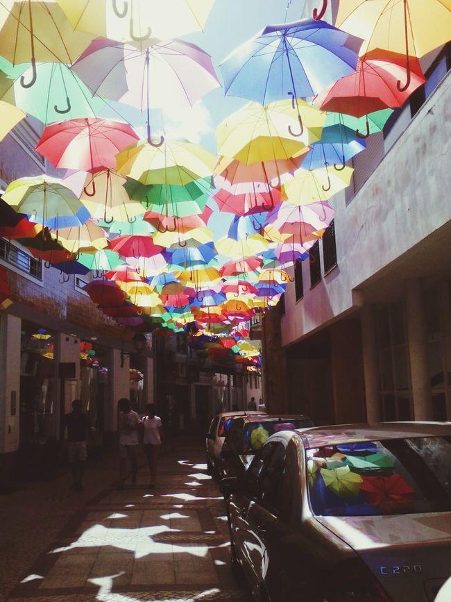Umbrella águedacity