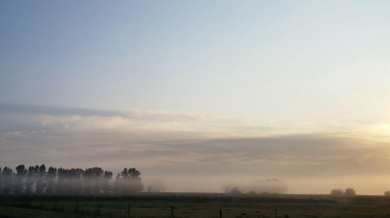 Ontheroad Foggy Morning Eye4nature Eye4photography