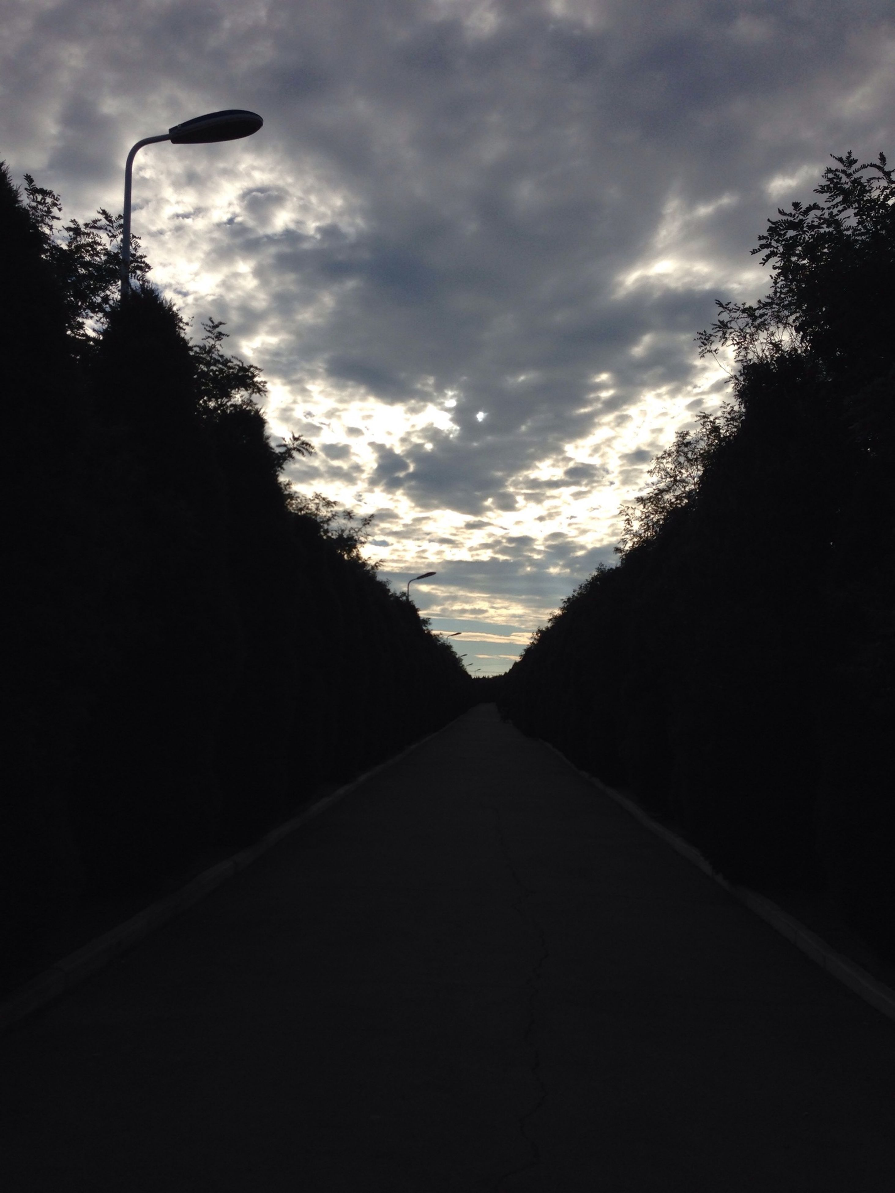 the way forward, sky, tree, diminishing perspective, road, cloud - sky, silhouette, vanishing point, tranquility, tranquil scene, transportation, cloud, cloudy, sunset, nature, empty, country road, beauty in nature, empty road, scenics
