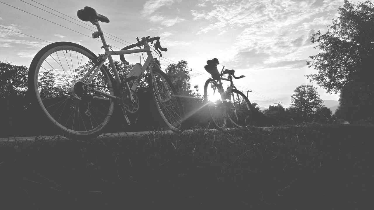 bicycle, mode of transport, transportation, land vehicle, outdoors, stationary, tree, sky, day, no people, grass, nature