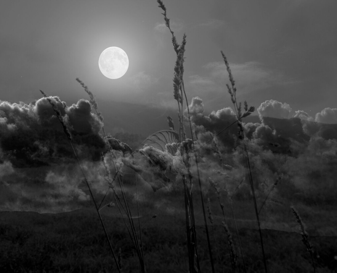Blackandwhite Black And White Moon Monochrome Bnw Noir Et Blanc Blancoynegro All_shots