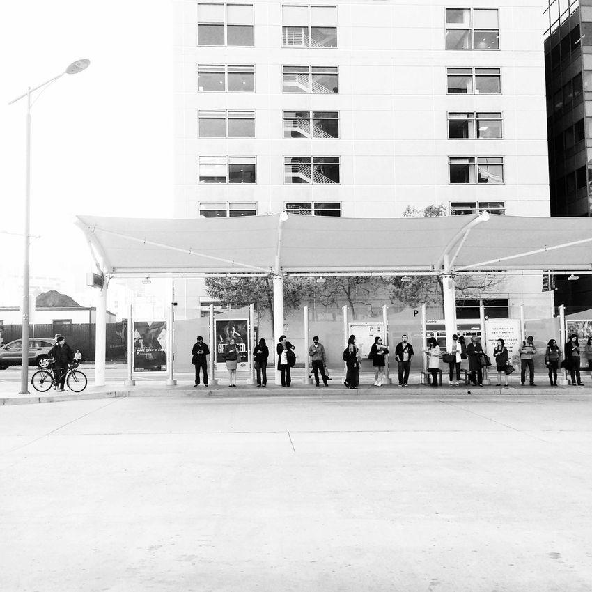 Passengers waiting at a Bus Stop at the San Francisco Temporary Transbay Terminal . Black And White