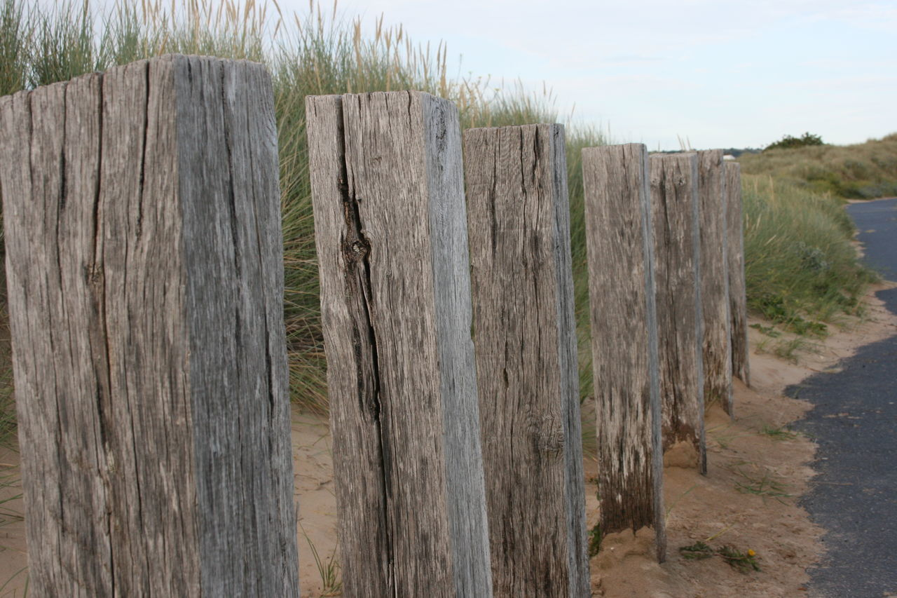 Wood Posts Sand Grass Taking Photos