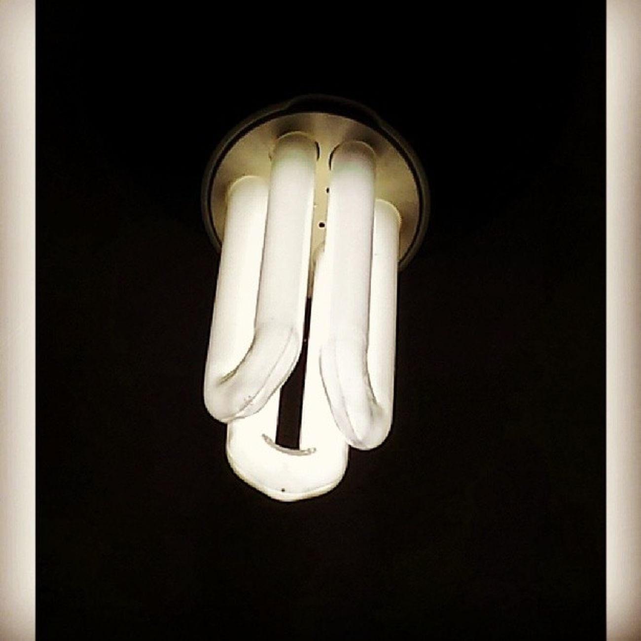 Lightbulb Bedroomlight Lightology Cfl Light bulb macro @lightology_highlight