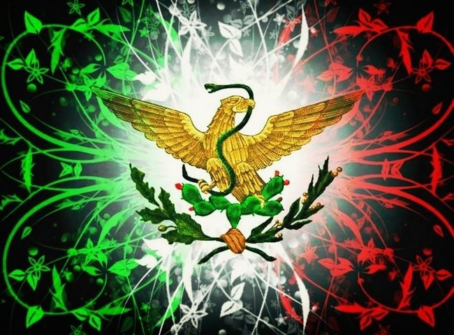 Mexican to the core!!! And proud to say so!!(:(: