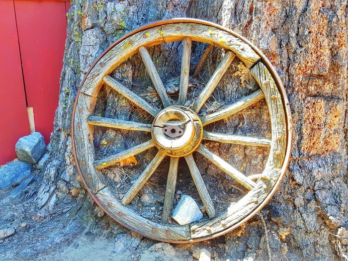 Rustic Wagon Wheel Colour Of Life Wagon Wheels Trees Outdoors Rustic Fine Art Old Fashion Wagonwheel Nature ForTheLoveOfPhotography EyeEm Eye4photography  Eyeemphotography Photography Is My Therapy Perspective From My Point Of View