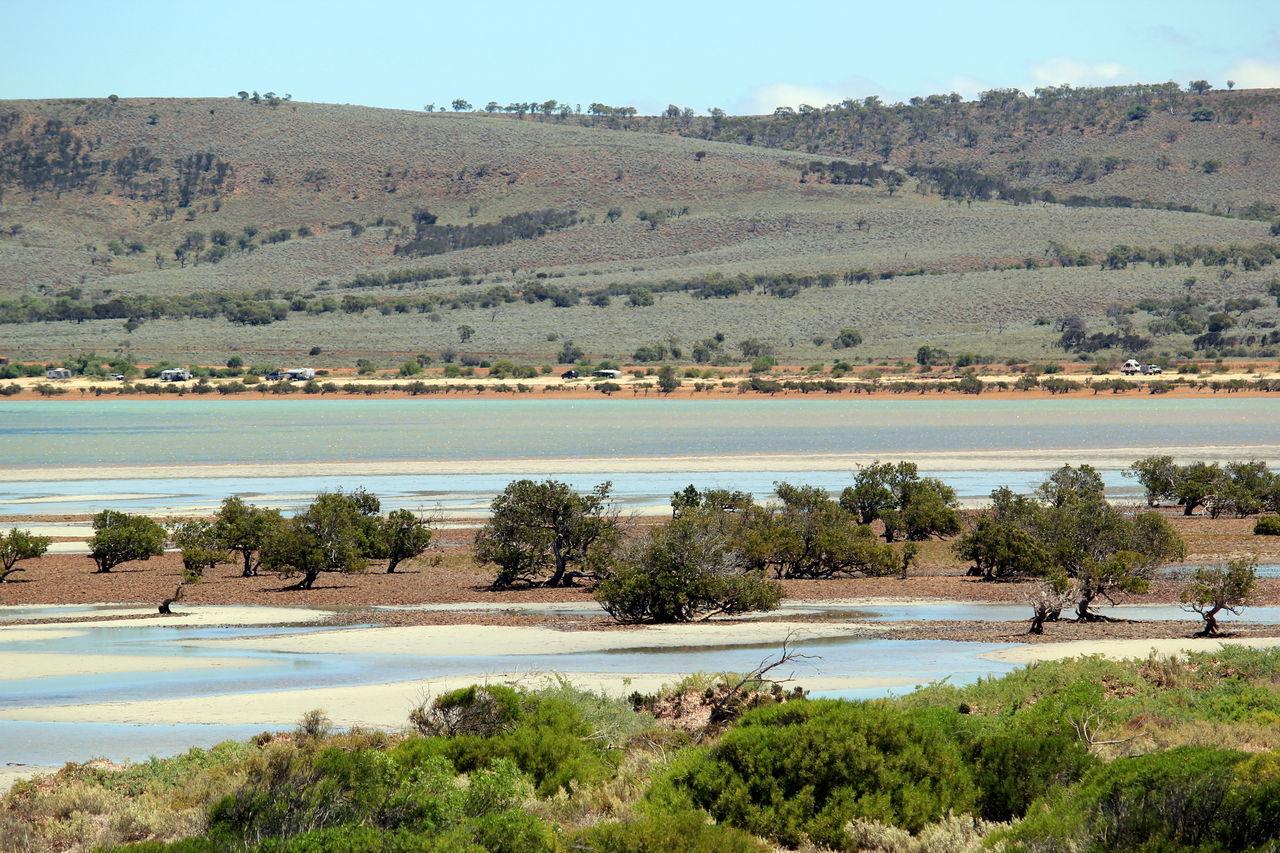 South Australia Australian Landscape Beach Photography Mangroves Beach Sea Sky Beauty In Nature Scenics Outdoors