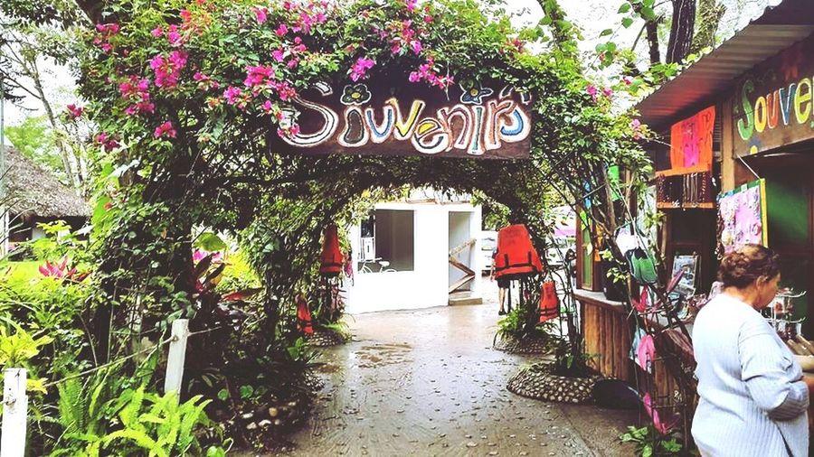 Tamasopo, México ❤️