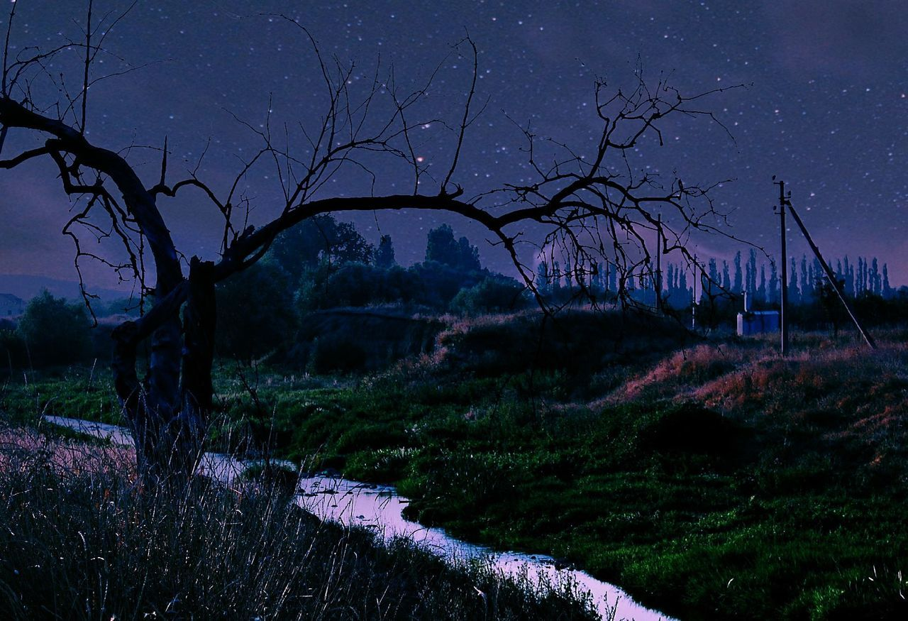 Night Twilight Tree Dusk Silhouette Atmospheric Mood Landscape Nature Rural Scene Tranquility Sunset Sky Grass No People Outdoors Galaxy Star - Space Astronomy