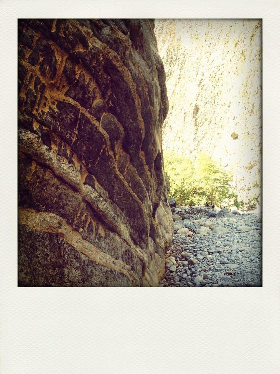 one summer landscape, all kinds of rock